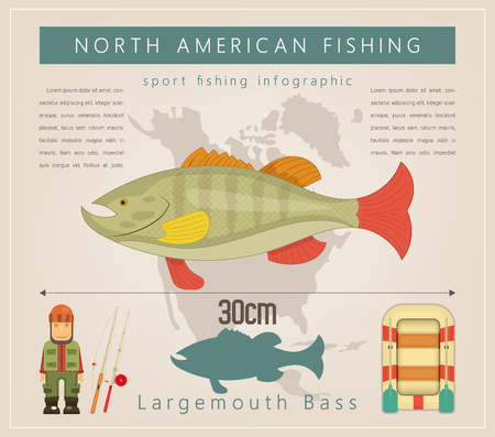 Largemouth Bass. North American Fishing Infographic Set. Freshwater Fish. Vector Illustration. Vettoriali