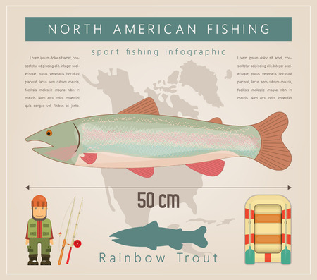 Rainbow Trout. North American Fishing Infographic Set. Freshwater Fish. Vector Illustration. Vectores