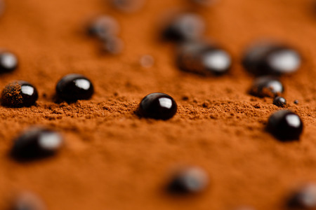 bolter: Close-up photo of chocolate drops on cacao powder surface