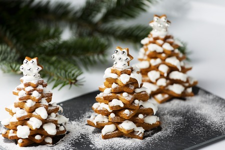 christmas tree decoration: Gingerbread Christmas trees cookies with live christmas tree branch and decoration