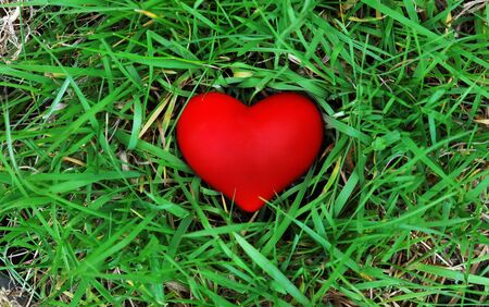 Natural love - Red heart on green grass photo