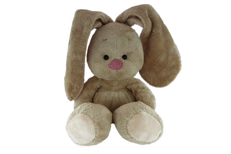 Brown teddy bunny with rose nose isolated on white background Standard-Bild