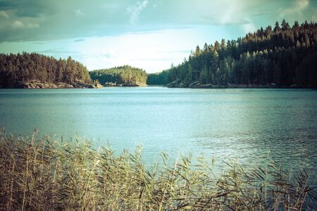 lake beach: Vintage toned image of lake and forest, Finland