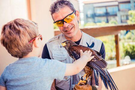 caress: boy caress a hawk holding by security, Greece