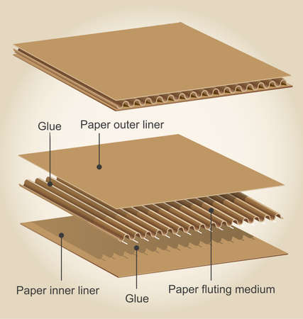 Three dimensional infographic of the different parts of a cardboard Vettoriali