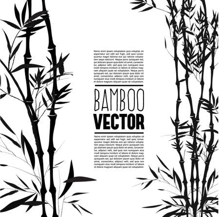 bush: Bamboo bush, ink painting over the white background