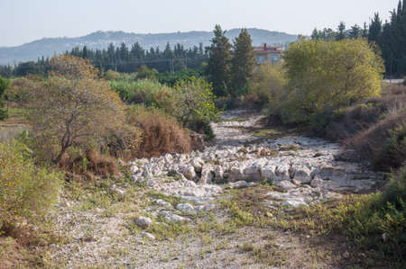 life is still while the river is dry, maybe its waiting flow again