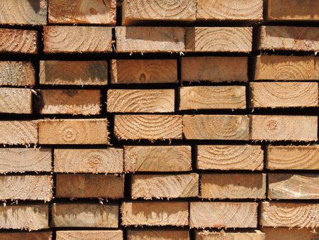 Stacked wood pine timber 2