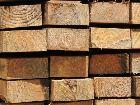 pine wood stacked timber 1