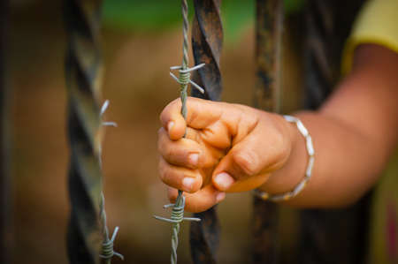 gripping: Hand gripping a barbed wire