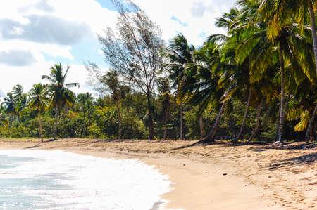 carribean: Seaview on a carribean beach