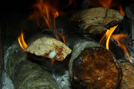 wood and fire: wood fire