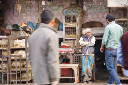 capon: Delhi, India - 2014, December 25 : An Indian shopkeeper in his poultry store and shoppers in the center of Old Delhi near the Jama Masjid mosque Editorial