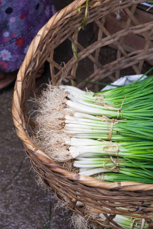 Bundles of spring onions or scallions on display on a street market on the Inle Lake in central Myanmar
