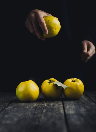 Quince in hand and on dark wooden background. Autumn fruits.