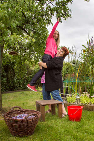 Mature woman with girl picking plums in the garden photo