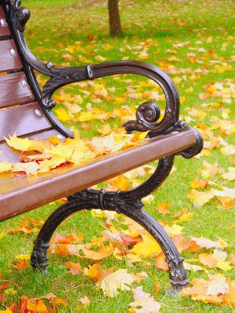 Park bench in autumn closeup Stock Photo