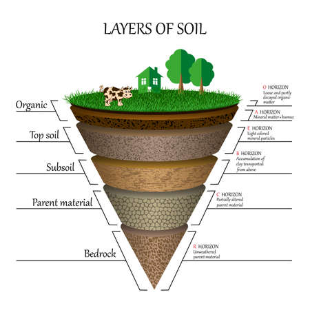 Layers of soil diagram images Vectores