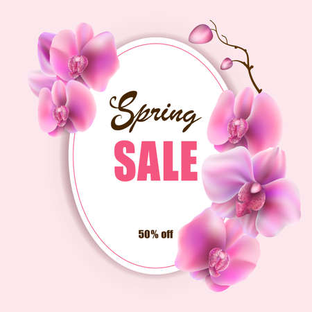 Vector mockup of banner beautiful spring pink orchids flower on background, layout for sale flyer, illustration for design.