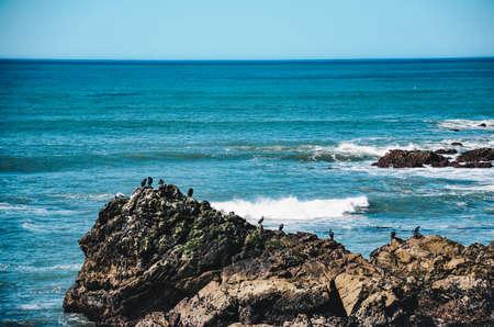 sur: california coast