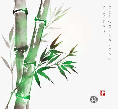 Card with green bamboo in sumi-e style. Hand-drawn with ink. Traditional Japanese painting. Sealed with hieroglyphs -  luck and happiness Illustration