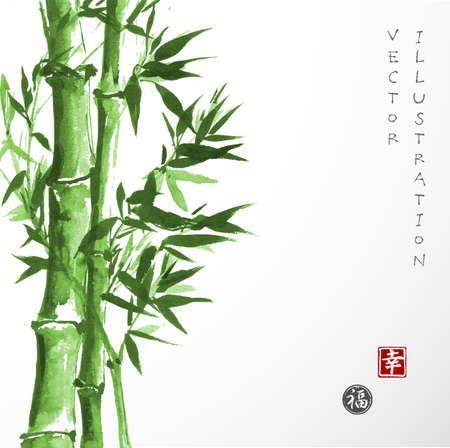 Karta z zielonego bambusa w sumi-e styl. Ręcznie rysowane tuszem. Tradycyjne japońskie malarstwo. Sealed z hieroglifami - powodzenia i szczęścia