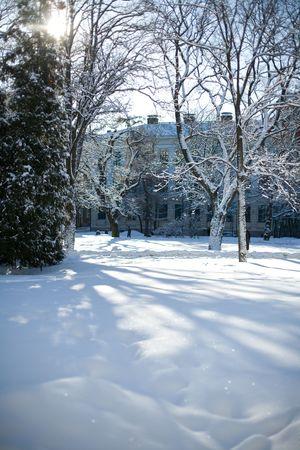 Beautiful winter scene in the park photo