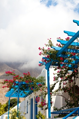 Beautiful bougainvillea flowers on a blue pergola in Perissa, Santorini, Greece photo