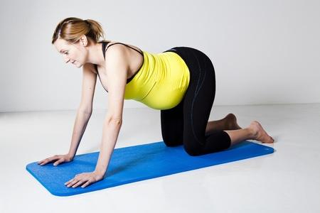 mujer arrodillada: Mujer embarazada en una posici�n de cuatro puntos de rodillas dispuesto a ejercer sus m�sculos del tronco centrales Foto de archivo