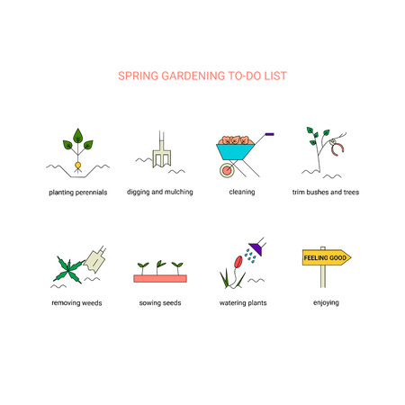 removing: Spring gardening to do list. Garden clean up checklist with planting perennials, digging and mulching, cleaning, trim bushes and trees, sowing seeds, removing weeds, watering plants . Vector line icons. Springtime infographic. Illustration