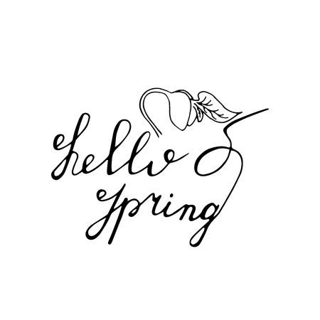 Hello Spring hand drawn lettering with sprout icon. Vector greeting card.