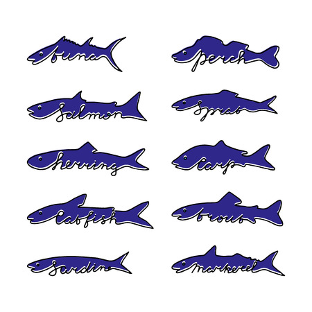 mackerel: Hand drawn fish species with lettering. Tuna, salmon, herring, catfish, sardine, perch, sprat, carp, trout, mackerel. Illustration