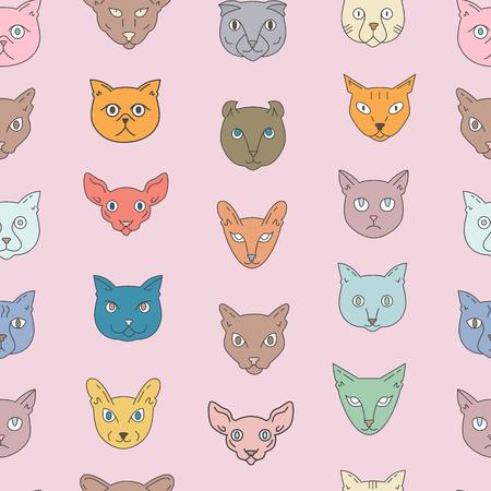 Cat breeds seamless pattern on a pink background. Color american shorthair, scottish fold, bengal, siamese, birman, somali, british shorthair, sphynx, tonkinese, burmese, abyssinian, turkish angora, persian, oriental shorthair, nebelung, american curl. Cu