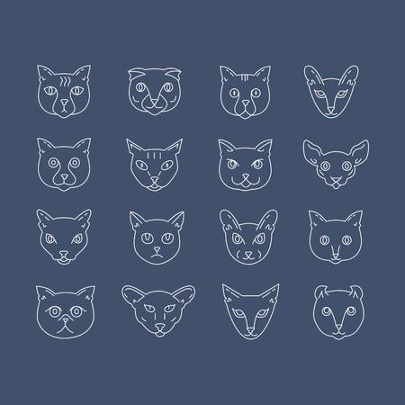 Cat breeds icon set including american shorthair, scottish fold, bengal, siamese, birman, somali, british shorthair, sphynx, tonkinese, burmese, abyssinian, turkish angora, persian, oriental shorthair, nebelung, american curl. Cute pets collection.