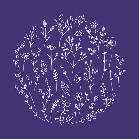 Romantic floral elements in circle shape. Vector isolated flowers.