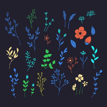 Hand drawn romantic flowers vector illustration set