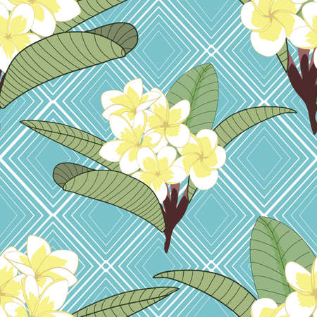 Plumeria flowers on rhombus blue background texture background