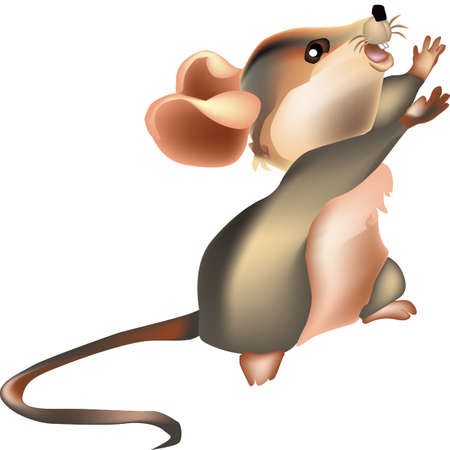 mouse: Vector image of Mouse Illustration