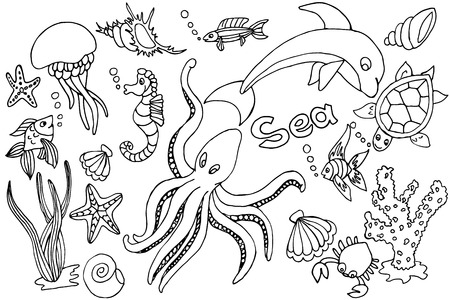 Hand draw set of different marina creatures: fish, seahorse, starfish, octopus, jellyfish, seaweeds, coral, crab, mussels, scallops