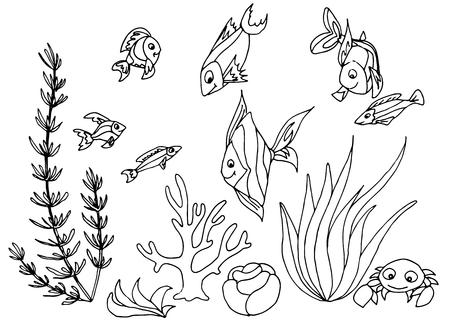 tropical fish: Tropical fish hand drawn design set. Vector illustrations.