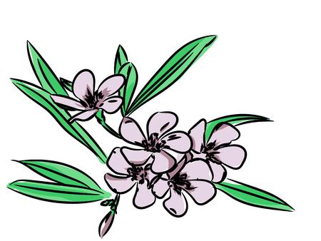 sketch pattern: