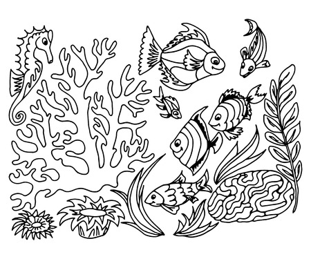 tropische fische: Tropical fish hand drawn design set. Vector illustrations.