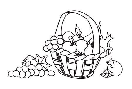 fruit basket: apple, grape, banana, pomegranate. Hand drawn, doodle, sketch vector design elements. Isolated on a white background.  Vector illustration Ilustração