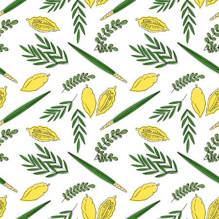 sukkoth: Sukkot seamless pattern background. Etrog, lulav hadas and arava. Vector illustration. Isolated on white background.