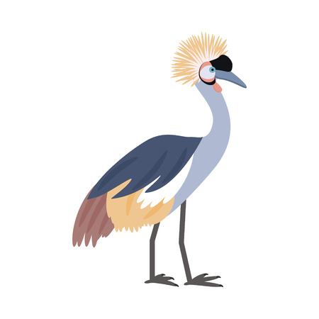 African bird. Crowned crane. Isolated on white background. Vector illustration. Illustration