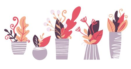 Hand drawn houseplants. Flower pots and planters. Vector illustration.