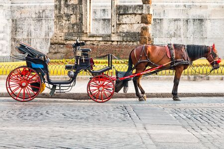 a horse attached to a carriage with red wheels, parked under a monument in Rome is waiting for tourists.