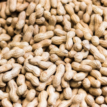 Macro image with full of peanuts.