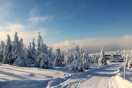 revival: Snowy, winter trail from Polish hostels Revival to the Czech Republic Spindleruv Mlyn.