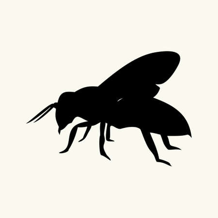 stinger: the image of the bee illustration Illustration